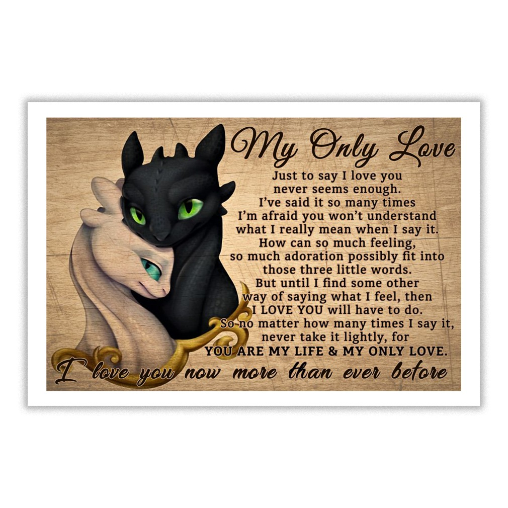Toothless and Light Fury my only love just to say I love you small poster